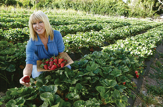 suzanne somers strawberries